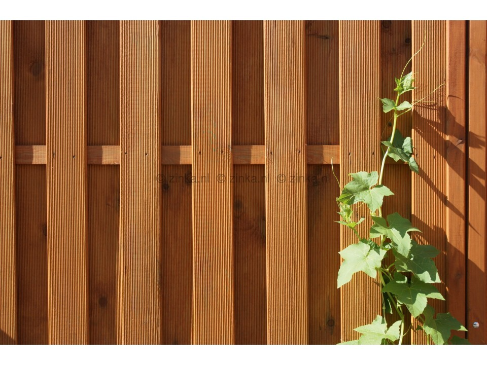 pine lariks 2634